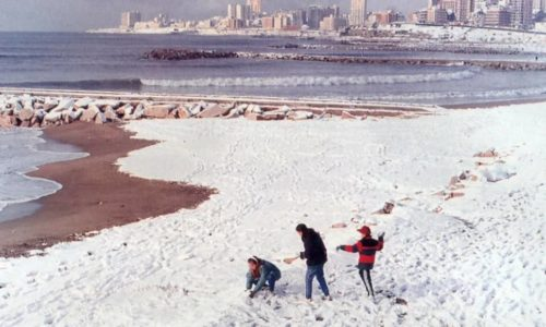 Llegó la nieve a Mar Del Plata después de 28 años