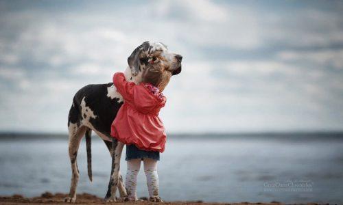 Las mejores fotos de niños con sus perros gigantes